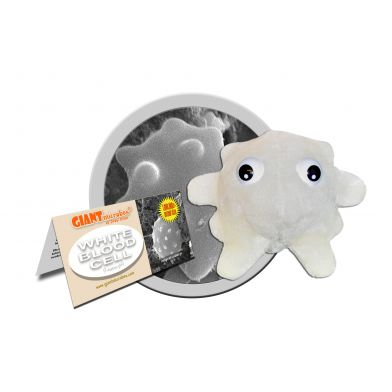 Giant Microbes, Hvit Blodcelle